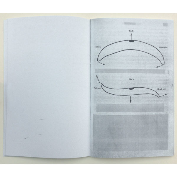 Amanda Thackray Selected Diagrams