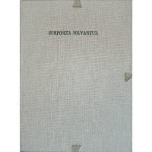 Luca Bertolo Composita Solvantur