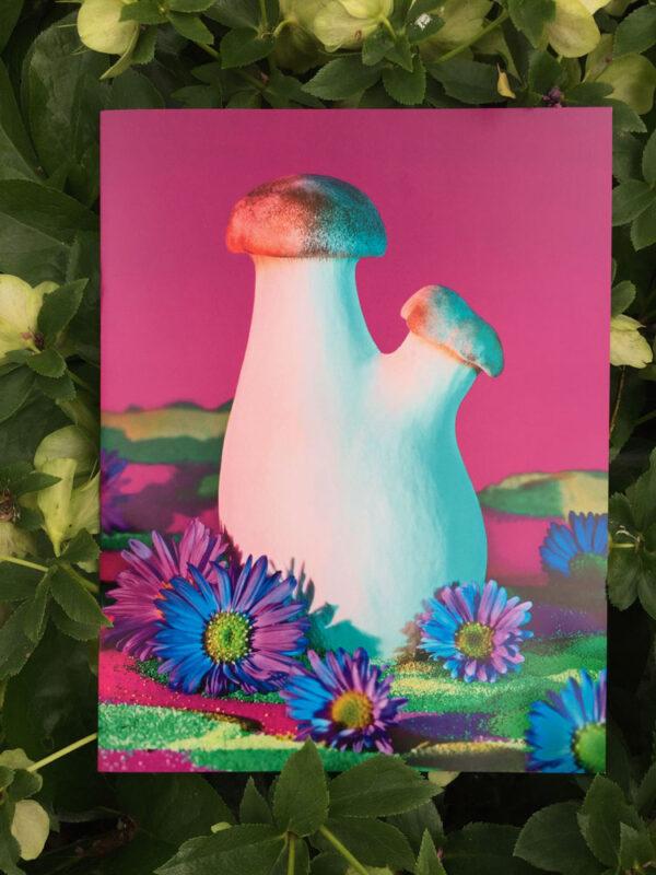 PhyllisMa Mushrooms 2